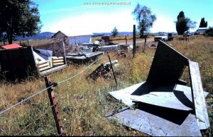 Habitat T.s.concinnus; Old rubbish on farm in Willamette Valley (Oregon).