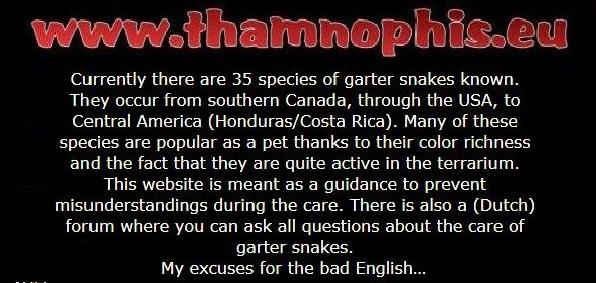 Thamnophis.en