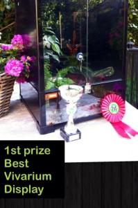 First prize of best vivarium display