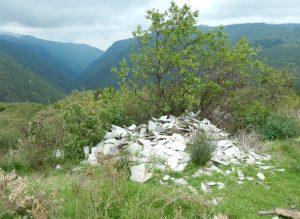 Habitat of Thamnophis conanti