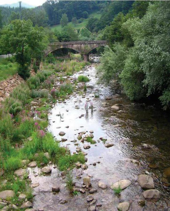 Fig. 4. Rio Nansa, Cantabria, Spain, where the Iberian grass snake (Natrix astreptophora) and the Viperine snake (Natrix maura) were found. (Picture Paul Storm, 2004).